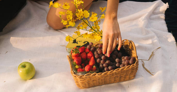 Best Picnic Baskets - Reviews and Buying Guide