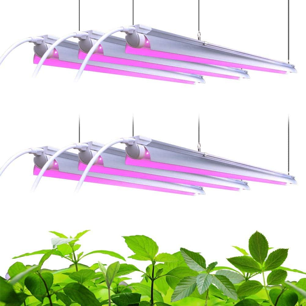 Barrina LED Grow Light