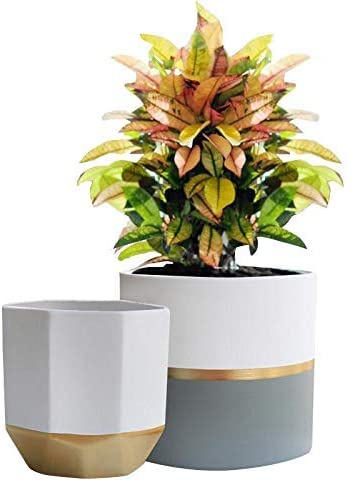 White Ceramic Flower Pot Garden Planters